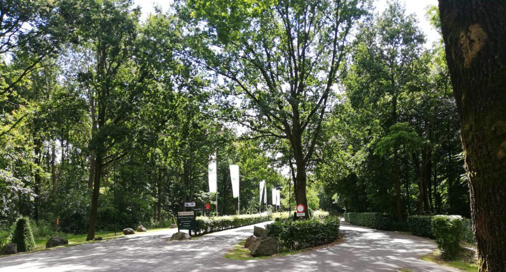 Nieuwe ontwerpen verbeteren parkentrees Center Parcs